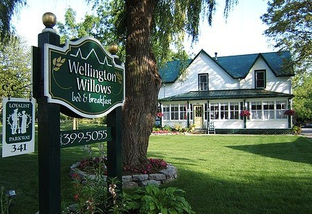 Wellington_Willows_BB